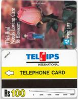 PHONE CARD - URMETPAKISTAN (E36.40.6 - Pakistan