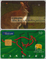 PHONE CARD - PORTOGALLO (E37.5.5 - Portogallo