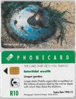 PHONE CARD - SUDAFRICA (E37.35.4 - Sudafrica