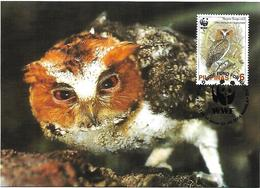 Philippines 2004 - Max Card - Negros Scops-Owl (Otus Megalotis Nigrorum - Eulenvögel