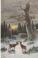 Carte Postale Ancienne Illustrée - Paysage Hivernal - Vers 1900 - Illustrateurs & Photographes