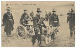 Guerre De 14/18 - Armée Belge - Mitrailleuse Maxim - Attelage De Chiens - Guerre 1914-18