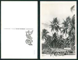 OF [17291] - PAPUA NEW GUINEA - NATIVES OF  NEW GUINEA - Papua New Guinea