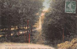 72-SILLE LE GUILLAUME-N°2207-D/0151 - Sille Le Guillaume