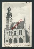 BINCHE. L'Hôtel De Ville.  Edition Winance-Nachtergaele.  2 Scans - Binche