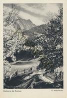 Herbst In Der Ramsau  [6A-1.502 - Autriche