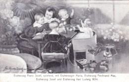Autriche - Erzherzog Franz Josef, Spielend,mit Erzherzogin Maria,ferdinand Max , Josef Und Karl Ludwig - Ohne Zuordnung