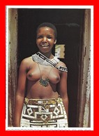 CPSM/gf  AFRIQUE DU SUD. Seins Nus Ndebele Girl...S724 - Africa Del Sur, Del Este, Del Oeste