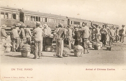 On The Rand : Arrival Of Chinese Coolies 163 - Afrique Du Sud
