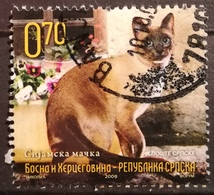 2009 BOSNIA AND HERZEGOVINA RS BANJA LUKA Siamese Cat - Bosnië En Herzegovina
