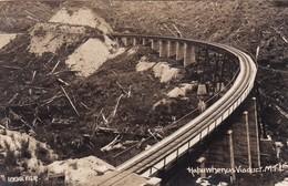 HAPUWHENUA VIADUCR. MTL.. FGR SERIES DOMINION OF NEW ZELAND. NON CIRCULEE CIRCA 1925- BLEUP. - Nieuw-Zeeland