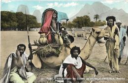 5-(50)-FAMINLY TRASPORT BY CAMEL IN KASSALA PROVINCE-SUDAN - Sudan