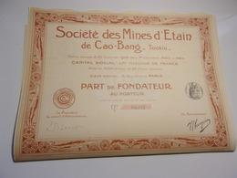 MINES D'ETAIN DE CAO BANG (tonkin) - Shareholdings