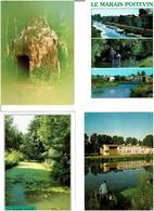 79 / MARAIS POITEVIN /  Lot De 90 Cartes Postales Modernes écrites - Cartes Postales
