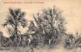 ALTE   AK   DEUTSCH-SÜDWEST-AFRIKA /  Deutsche Kolonie - Landschaft Im Ovamboland - 1910 Ca. - Ehemalige Dt. Kolonien