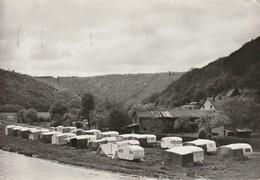 Vresse - Le Camping - Vresse-sur-Semois