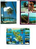 972 / MARTINIQUE /  Lot De 90 Cartes Postales Modernes écrites - Cartes Postales