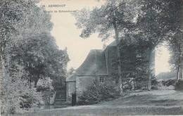 Aerschot ,Aarschot , Moulin De Schoonhoven , Molen ( S B P , N° 5) - Aarschot