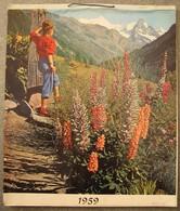 Calendrier 1959 Pharmacie André Lecron Montigny Le Tilleul - Big : 1941-60