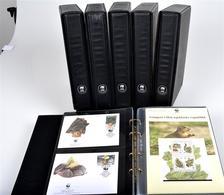 Collection Du WWF (Fonds Mondial Pour La Nature) Dans 12 Albums Complets - W.W.F.