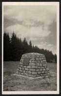 Cpa Carte Photo Belgique Saint Hubert Monument Mémorial Du Roi Albert 1er --- BT049 - Saint-Hubert
