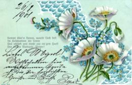 Blumen, Blüten, 1901 - Blumen