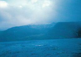 1 AK Isle De L'Est - Eine Der Crozet Inseln * TAAF Terres Australes Et Antarctiques Françaises - South Indian Ocean - TAAF : Terres Australes Antarctiques Françaises