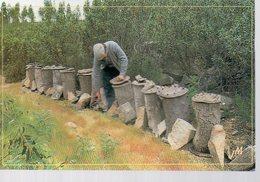 REF 357 - CPM Apiculture Apiculteur JM GRANGER - Agricultura