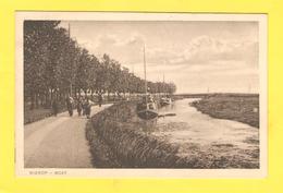 Postcard - Netherlands Nierop     (27175) - Edam