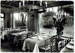 "Mini Carte Publicité Nels. Oostkerke-Damme. Restaurant ""Siphon"" - Damme"
