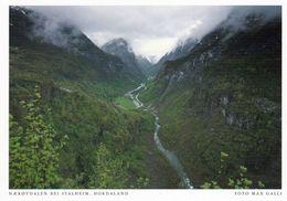 1 AK Norwegen * Das Nærøydalen (deutsch: Nærøytal) - Blick In Das Nærøytal Bei Stalheim * - Norwegen