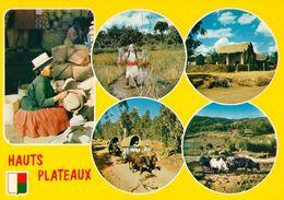 1 AK Madagaskar * Hauts-Plateaus - Das Zentrale Hochplateau In Madagaskar - IRIS Karte Nummer 6208 - Madagaskar