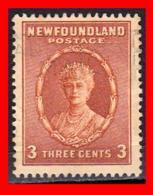 CANADA ISLA DE TERRANOVA   SELLO AÑO 1931 QUEEN MARY 3 CENTS - 1911-1935 Reinado De George V