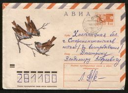 Russia USSR 1974 Air Mail Stationery Cover Fauna, Birds, Sparrows - Moineaux