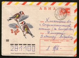 Russia USSR 1974 Air Mail Stationery Cover Fauna, Birds, Goldfinches - Moineaux