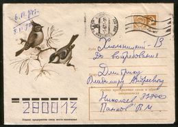 Russia USSR 1975 Stationery Cover Fauna, Birds, Tits Tufted And Black - Moineaux