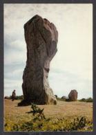 92093/ MEGALITHES, Carnac, Les Alignement Du Ménec, Le Menhir Appelé *Le Géant* - Dolmen & Menhirs