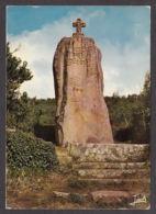 92101/ MEGALITHES, Penvern, Le Menhir Christianisé - Dolmen & Menhirs