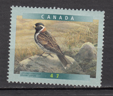 Canada, MNG, Bruant Lapon, Passereau, Oiseau, Bird - Songbirds & Tree Dwellers