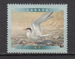 Canada, MNG, Oiseau, Bird, Sterne - Other