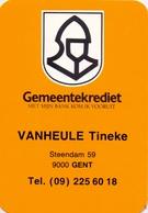 Kalender Calendrier - 1994 - Pub Reclame - Gemeentekrediet - Tineke Vanheule  Gent - Calendriers
