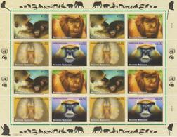 United Nations Mi 485-488 Endangered Species - Vienna * * Full Sheet - Monkeys - Grivet (Chlorocebus Aethiops) - Wien - Internationales Zentrum
