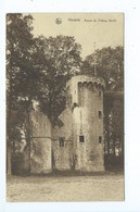 Herzele Ruines Du Château - Herzele