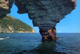 Il Gargano - Foggia - Testa Del Gargano - 23 - Formato Grande Viaggiata – E 9 - Italia