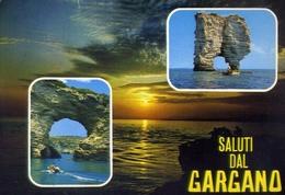 Saluti Dal Gargano - Foggia - 152 - Formato Grande Viaggiata – E 9 - Italia