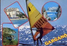 Saluti Dal Gargano - Foggia - 8258 - Formato Grande Viaggiata – E 9 - Italia