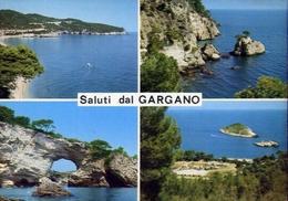 Saluti Dal Gargano - Foggia - 90 - Formato Grande Viaggiata – E 9 - Italia