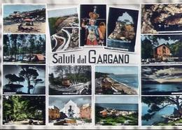Saluti Dal Gargano - Foggia - Formato Grande Viaggiata – E 9 - Italia