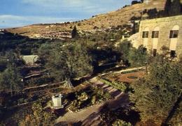 Garden Of Gethsemani Jerusalem - Jordan - Formato Grande Viaggiata Mancante Di Affrancatura – E 9 - Israele