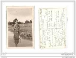 3992 AK PC CARTE PHOTO/N°725 ASIE INDOCHINE TOURANE BUFFLE MONTE PAR UN PETIT VIETNAMIEN /1953 - Vietnam